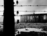 Українці в польському концтаборі Явожно, 1945–1949 рр.
